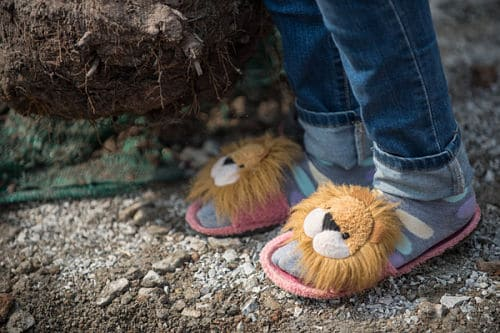 Phare Circus musician wearing fuzzy bedroom slippers outdoors