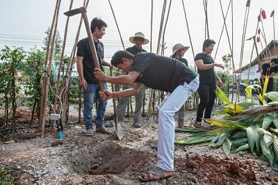 Phare Circus friends and business partners help transplant trees at the new location