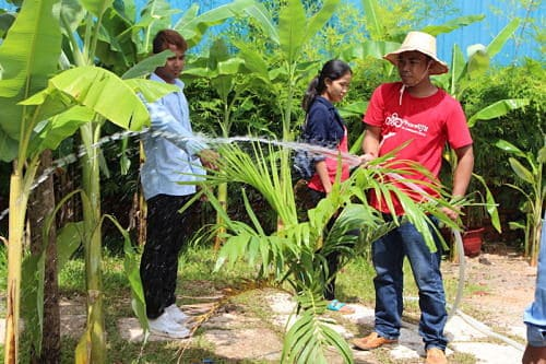 Phare Circus Siem Reap tree planting - staff planting trees together