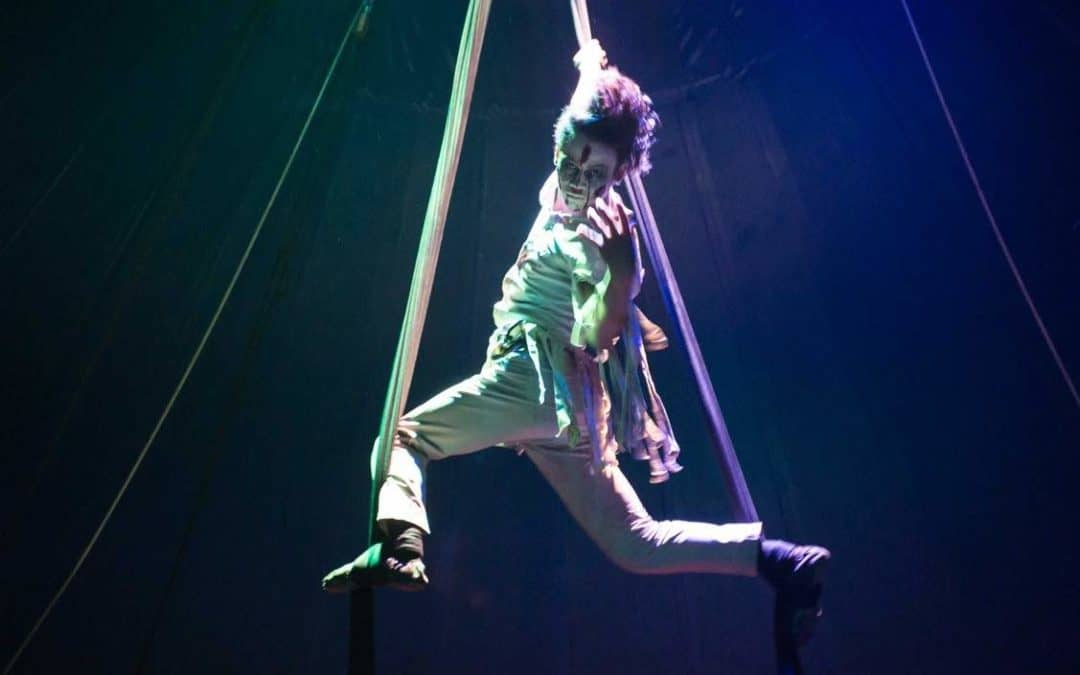 5 Facts you Didn't Know: Aerial Acrobatics