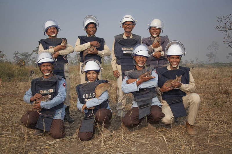 A group of APOPO de-mining hero rats and their trainers standing and kneeling in a field